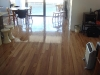 country timber flooring-blackbutt5-solid timber