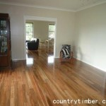 spotted gum solid timber flooring